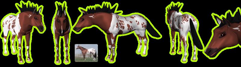 Preset for KITO Horse Body Parts
