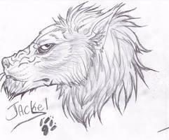 Vingate Jackel Sketch