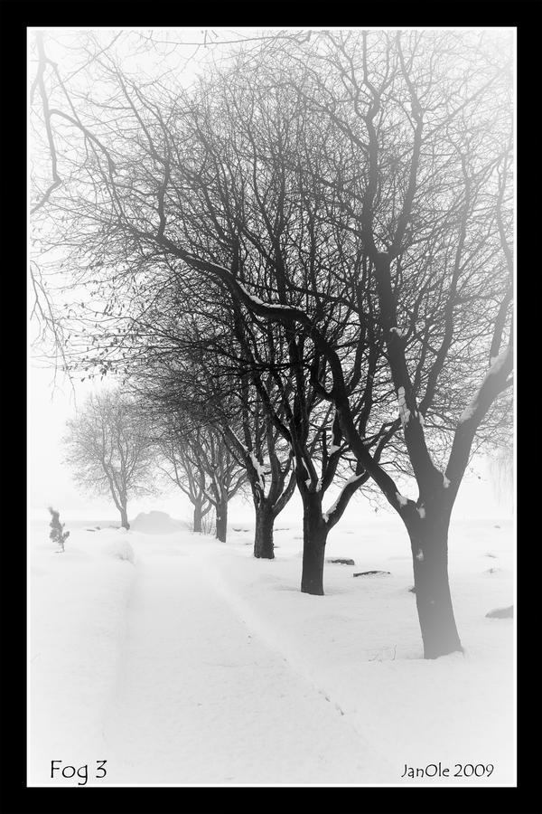 Fog 3 by joscon29