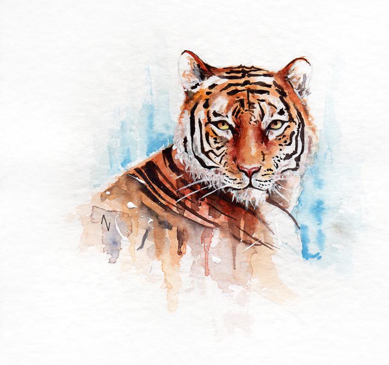29 July: Tiger Day by AVindas