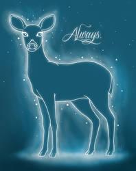Always. by Kauri