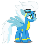Wonderbolt Echo Fleetfoot for Coco- Puffie