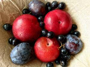 Fresh Plums, Grapes, and Peaches
