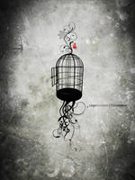 Caged no more by exarxil