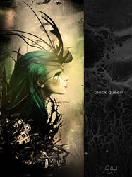 Black Queen by exarxil