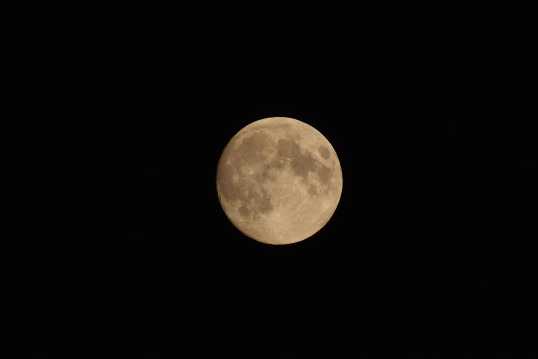 98% full Moon