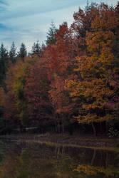 Couleurs d'automne by nonphotogenique
