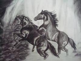 Horses by tzigone510