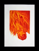 Fire Storm by tzigone510