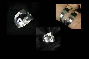 Sterling Silver Bliss by tzigone510