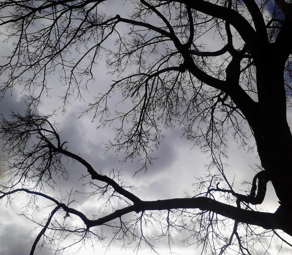dark skies by bohochik