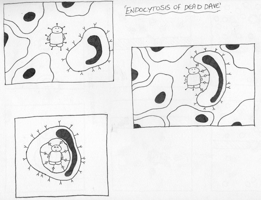 Endocytosis of Dead Dave by miss-hummingbird