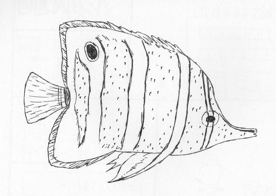 Tropical fish by miss-hummingbird