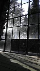 Glass Door by existential-courage