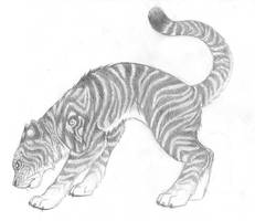 Tiger by GalaciaBarton