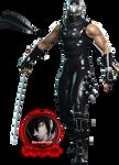 Ryu Hayabusa From Warriors Orochi 3
