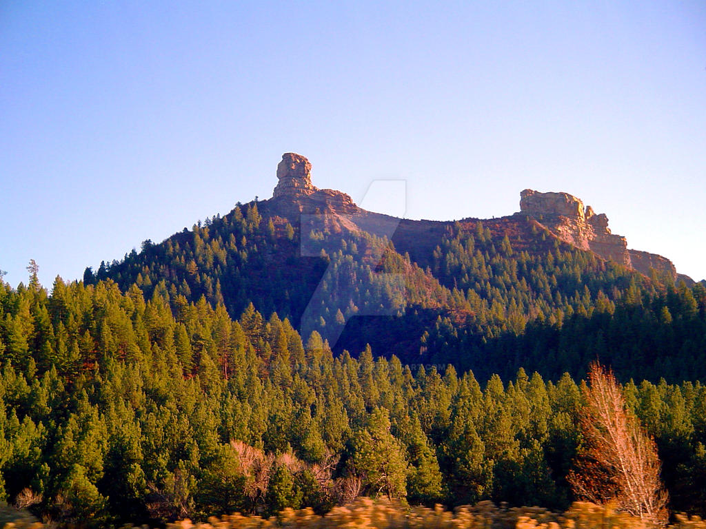 chimney rock chatrooms Chimney rock at chimney rock state park is an international outdoor destination in the blue ridge mountains of western nc, attracting visitors from around .