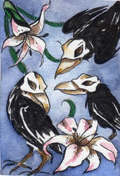 Raven and lilies