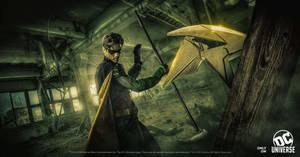 Robin - 1