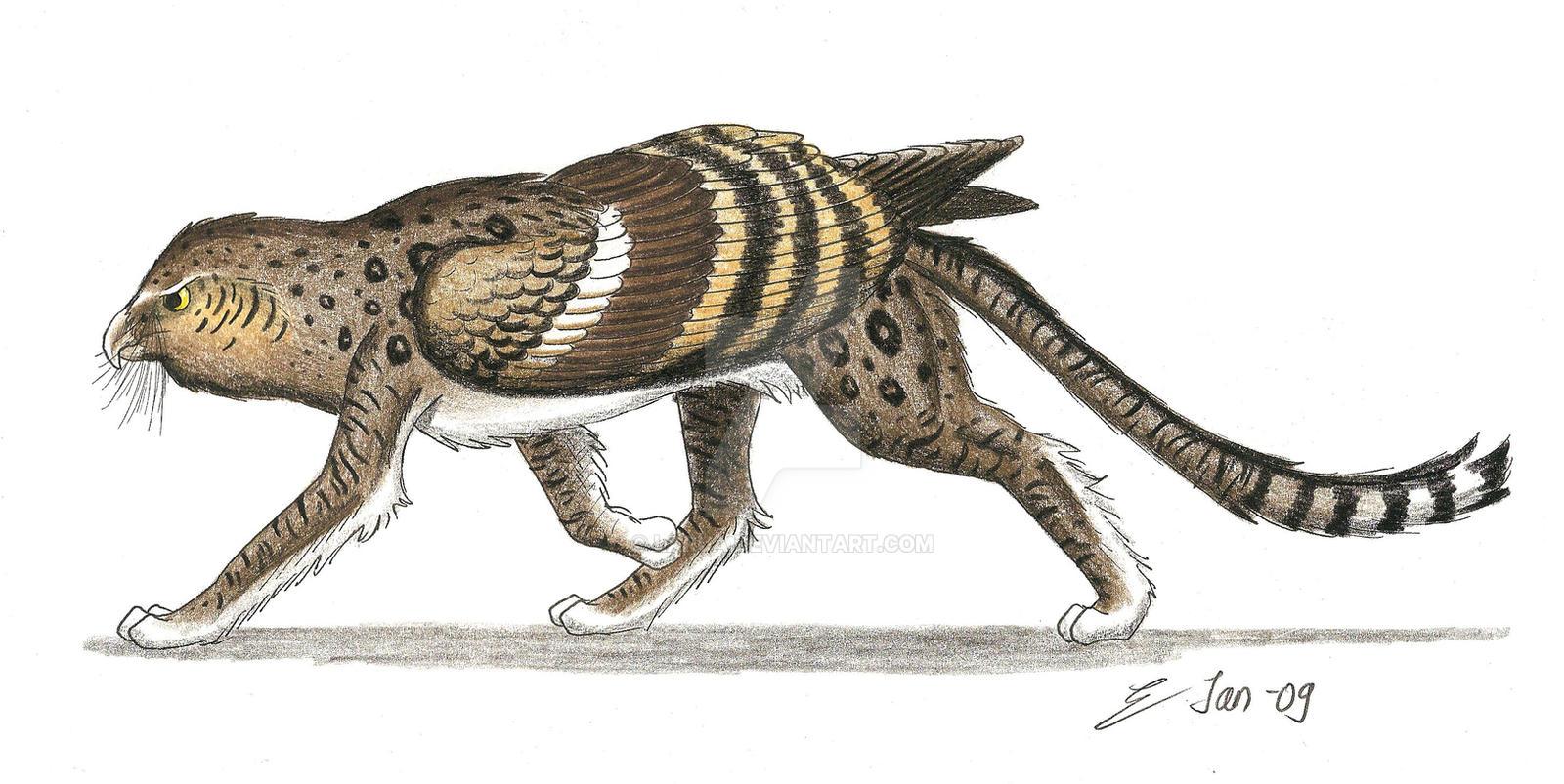 Cat Griffin