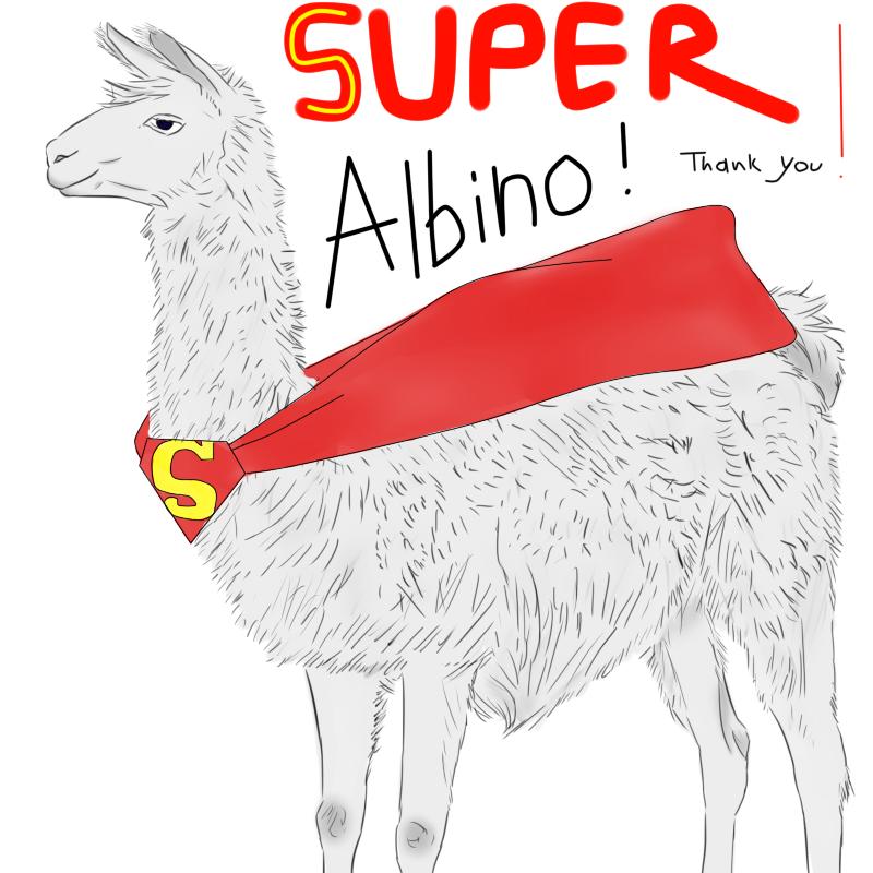 Super Albino Llama! by TinacoolART