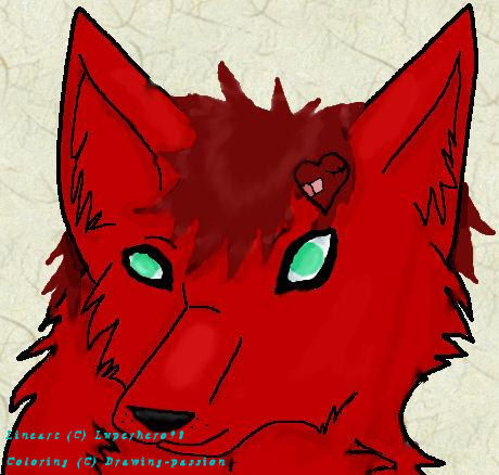 Creative Commons Attribution-Noncommercial-No Derivative ... Gaara As A Wolf