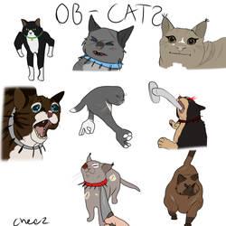 Ob Cats