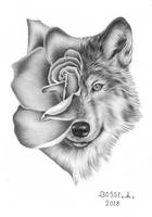 A rose and a wolf by Torsk1
