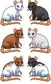 Free rat icons by Tirrih