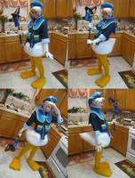 Donald Duck- Views