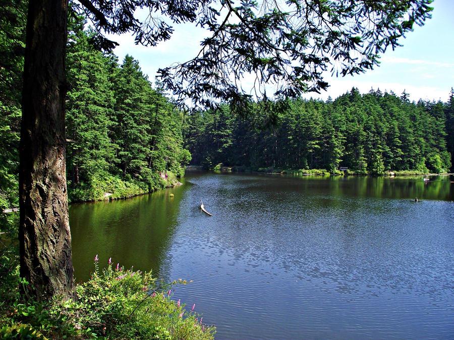 Cranberry Lake II by cjosborn
