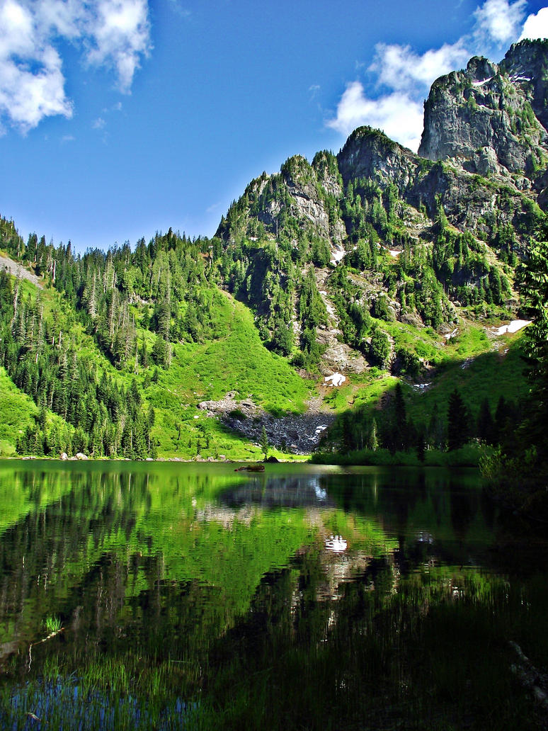Heather Lake Reflection II by cjosborn