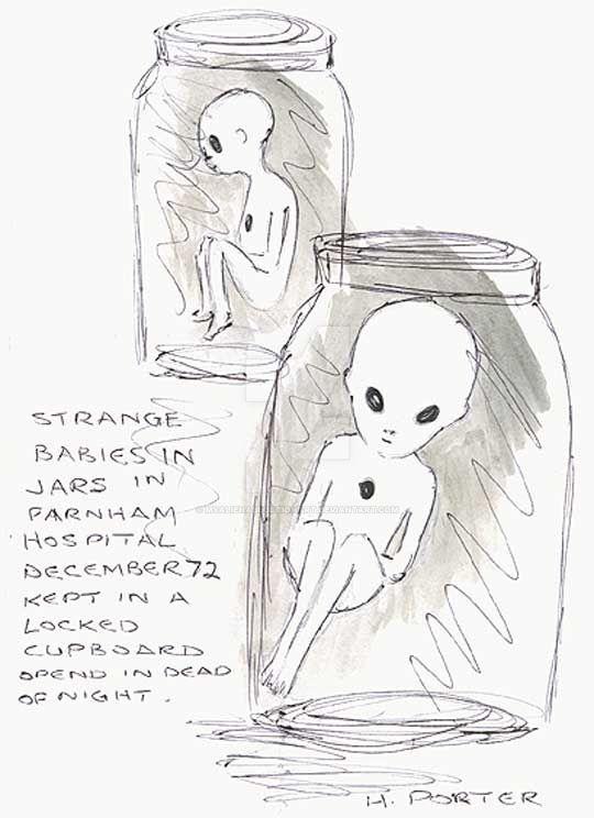 Alien Hybrid Foetuses by MyAlienAbductionArt