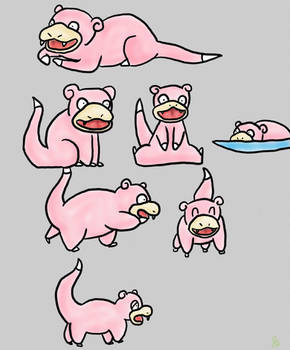slowpoke training