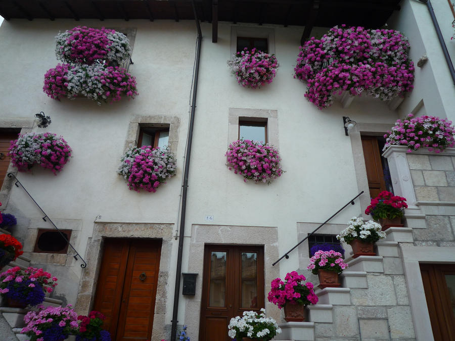 Prozori koji govore - Page 3 Flowered_house_by_theuglyclaus-d46i0k1