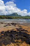 Hawaii (50) by IsabellaNY
