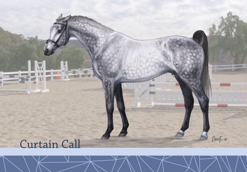 Curtain Call CS by Shotechi