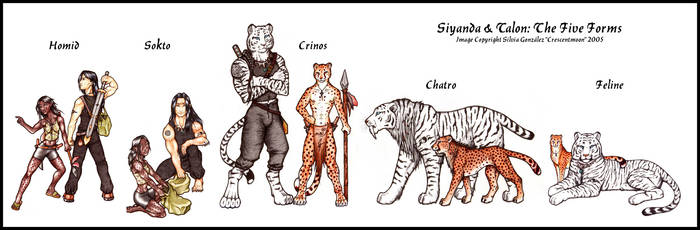 Bastet: The Five Forms