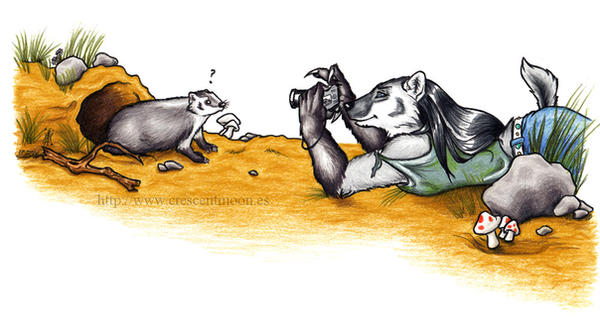 Shot a Badger -Color Version- by CrescentMoon