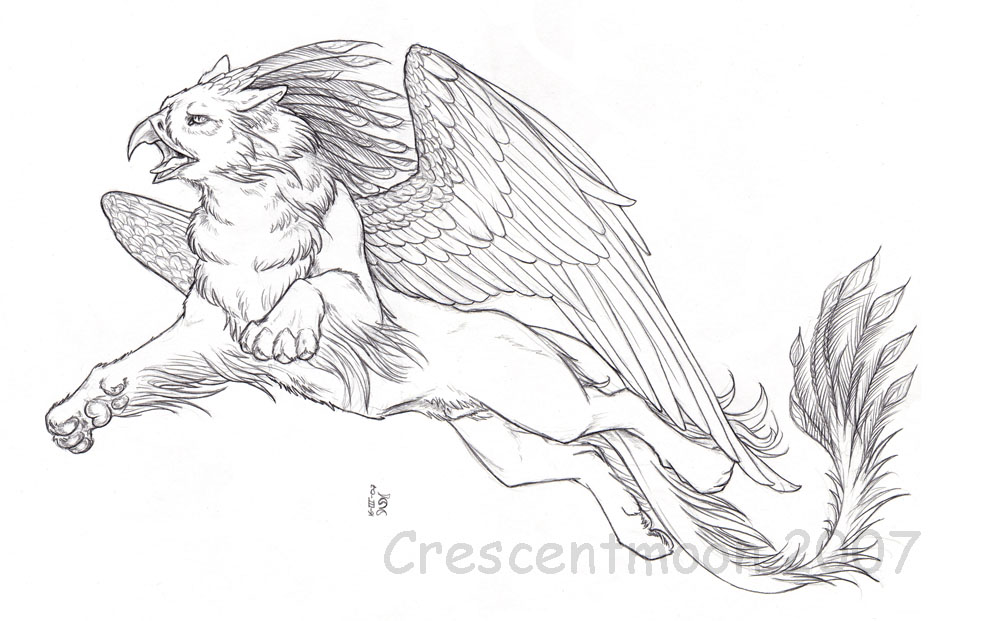 phoenix gryphon by crescentmoon on deviantart gryphon drawings
