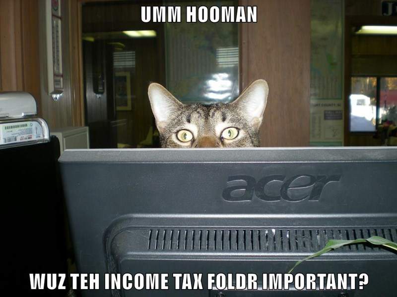 Wuz Teh Income Tax Foldr Important by SciFiNut2