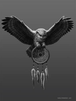 Owl and dream-catcher 16 11 2016