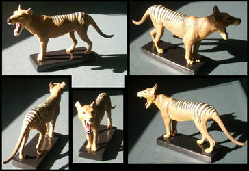 Thylacine Model by Forbidding