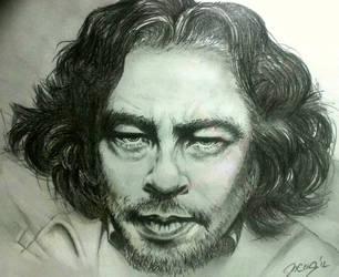 Benicio del Toro by Schkoda