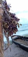 Cochilia Beach