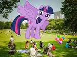 Playtime with twilight