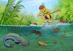 Tajbu and the pond