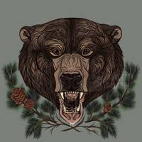 Bear Design for Redbubble