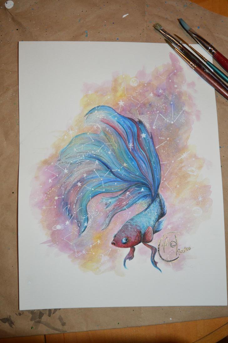 Betta galaxie by Chaico