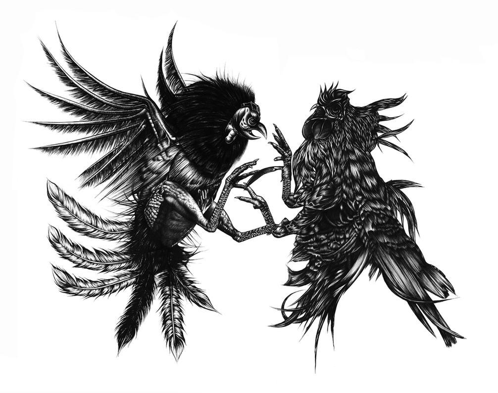 Rooster Fighting by FeRnIx on DeviantArt